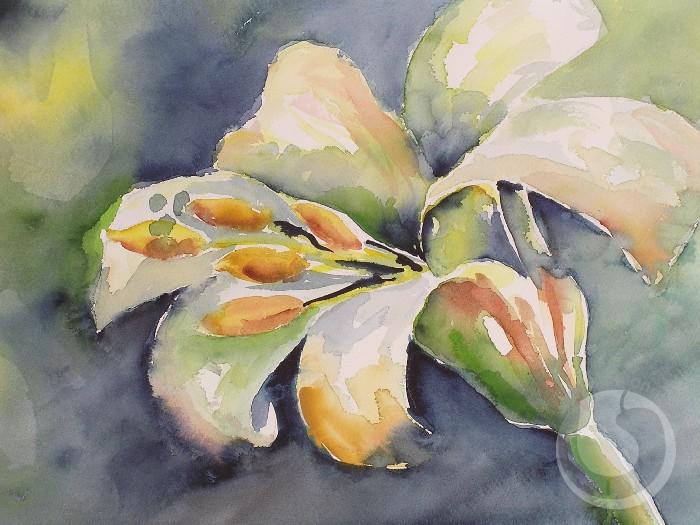 Eine präzise gemalte blühende weiße lilie vor einem dunkelblauen